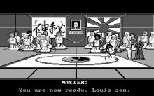 Kung Fu Louie Vs. The Martial Art Posse screenshot